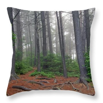 Misty Morning In An Algonquin Forest Throw Pillow