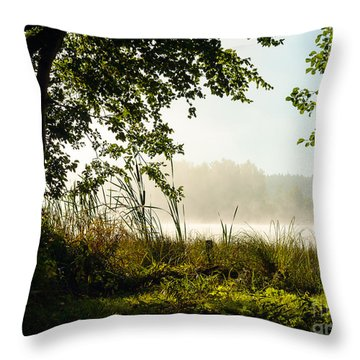 Misty Morning Light Throw Pillow