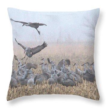Misty Morning Nebraska Landing Throw Pillow