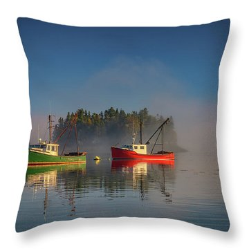 Throw Pillow featuring the photograph Misty Morning On Johnson Bay by Rick Berk