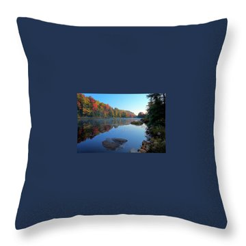 Throw Pillow featuring the photograph Misty Morning On The Pond by David Patterson