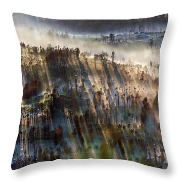 Throw Pillow featuring the photograph Misty Morning by Pradeep Raja Prints