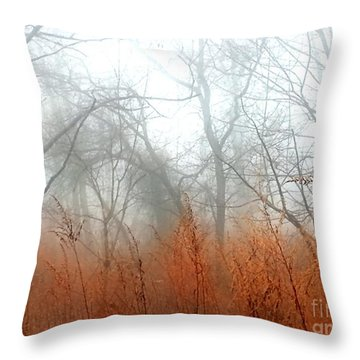 Throw Pillow featuring the photograph Misty Morning by Raymond Earley