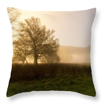 Misty Morning Throw Pillow by Rebecca Hiatt