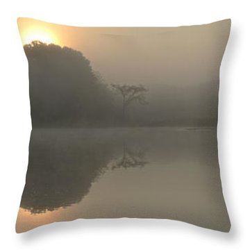 Misty Morning Water Throw Pillow