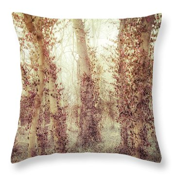 Misty Morning Winter Forest  Throw Pillow
