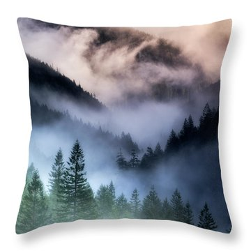 Misty Mornings Throw Pillow by Nicki Frates