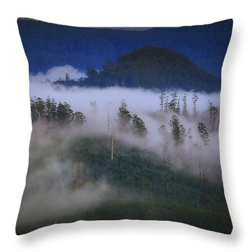 Throw Pillow featuring the photograph Misty Mountains by Tim Nichols