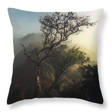 Misty Na Pali Throw Pillow