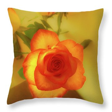 Misty Orange Rose Throw Pillow
