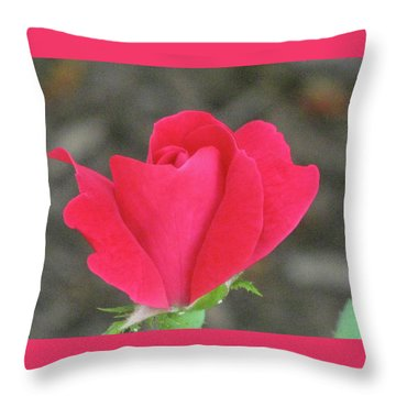 Misty Red Rose Throw Pillow by Michele Wilson