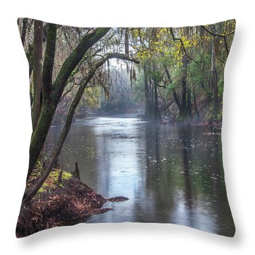 Misty River Throw Pillow by Tim Fitzharris