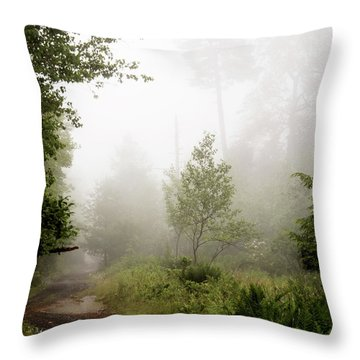 Misty Road At Forest Edge, Pocono Mountains, Pennsylvania Throw Pillow