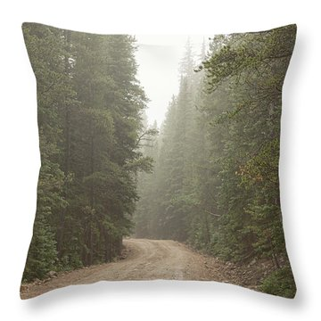 Throw Pillow featuring the photograph Misty Road by James BO Insogna