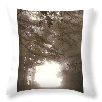 Throw Pillow featuring the digital art Misty Road by Julian Perry