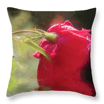 Throw Pillow featuring the photograph Misty Rose Reflections by Elaine Teague