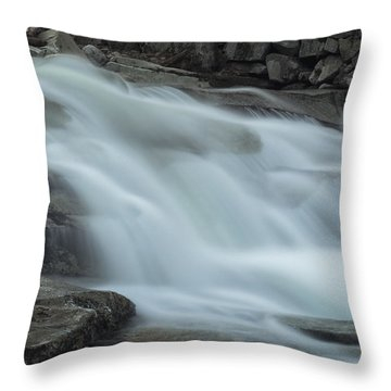 Misty Stickney Brook Throw Pillow by Tom Singleton