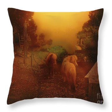 Misty Sundown Throw Pillow