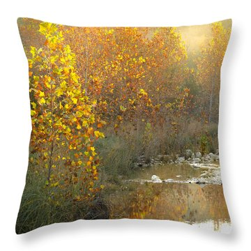 Misty Sunrise At Lost Maples State Park Throw Pillow by Debbie Karnes
