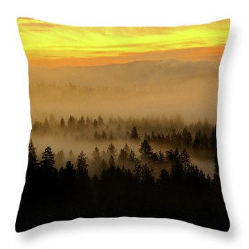 Throw Pillow featuring the photograph Misty Sunrise by Ben Upham III