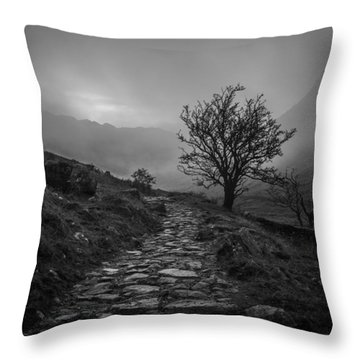 Misty Valley Throw Pillow