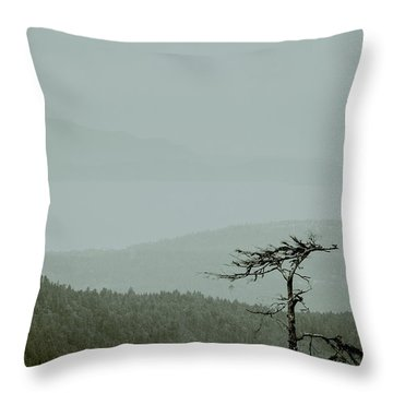 Misty View Throw Pillow