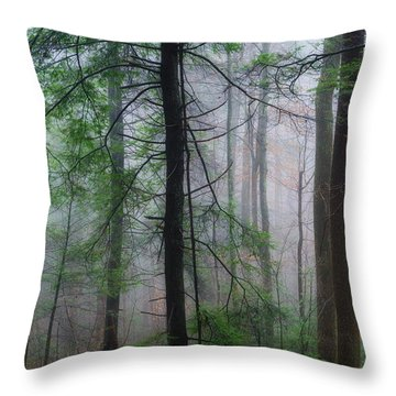 Throw Pillow featuring the photograph Misty Winter Forest by Thomas R Fletcher