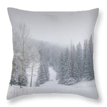 Misty Winter Panorama Throw Pillow