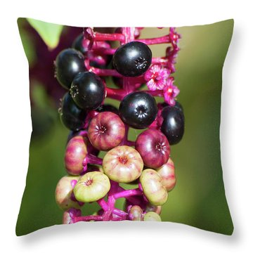 Mixed Berries On Branch Throw Pillow