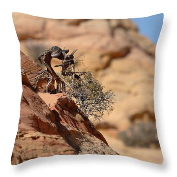Throw Pillow featuring the photograph Miyagi by David Andersen