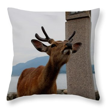 Miyajima Deer Throw Pillow