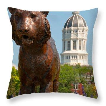 Mizzou Throw Pillow by Steve Stuller