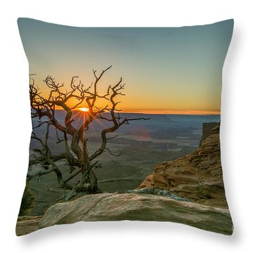 Throw Pillow featuring the photograph Moab Tree by Kristal Kraft