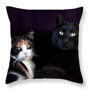 Throw Pillow featuring the photograph Mochi And Stinky by Laura Melis