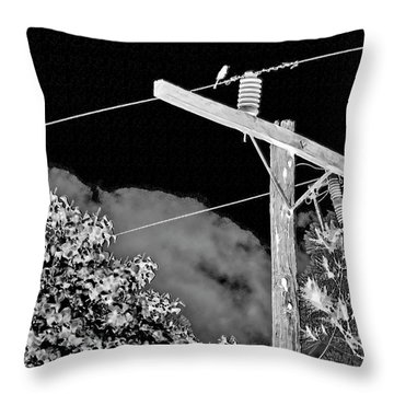 Mockingbird On A Wire Throw Pillow