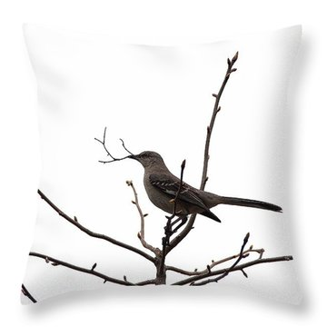 Mockingbird With Twig Throw Pillow