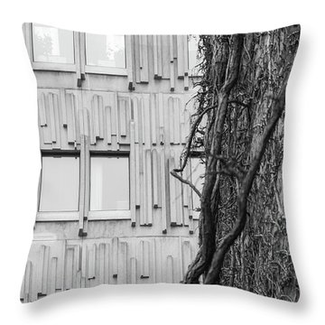 Modern And Nature Throw Pillow