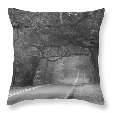 Modern Day Sleepy Hollow Throw Pillow by Lamarre Labadie