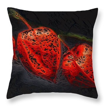 Modified Look Throw Pillow by Gabriella Weninger - David
