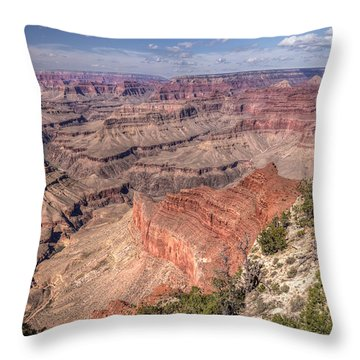 Mohave Throw Pillow