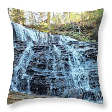 Mohawk Falls 2 - Ricketts Glen Throw Pillow