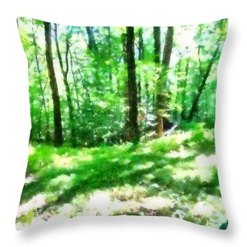 Throw Pillow featuring the photograph Mohegan Lake Forever Green by Derek Gedney