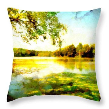 Throw Pillow featuring the painting Mohegan Lake Hidden Oasis by Derek Gedney