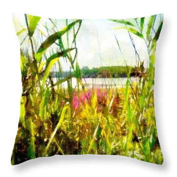 Throw Pillow featuring the painting Mohegan Lake In The Brush by Derek Gedney