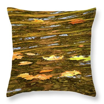 Mohican River Leaves Throw Pillow