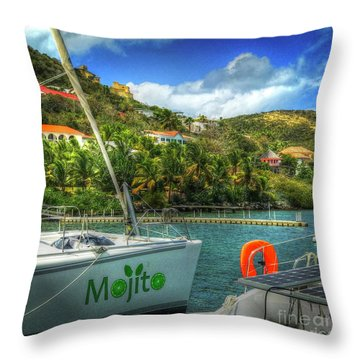 Mojito Throw Pillow