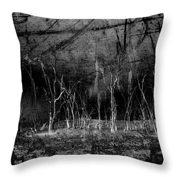 Throw Pillow featuring the photograph Mokoan by Linda Lees