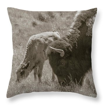 Throw Pillow featuring the photograph Mom And Baby Buffalo by Rebecca Margraf