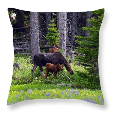 Throw Pillow featuring the photograph Mom And Baby by Dorrene BrownButterfield