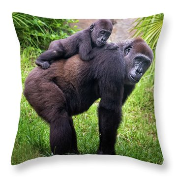 Mom And Baby Gorilla Throw Pillow by Stephanie Hayes